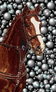 Horse Drawings Digital Art Prints - Proud with Bubbles Print by Patricia Barmatz