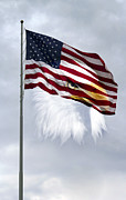 Flagpole Photos - Proudly We Hail by Peter Chilelli
