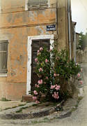 Provence Village Prints - Provence Door Number 9 Print by Lainie Wrightson