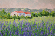 South Of France Paintings - Provence Lavender Volonne by Frederic Payet