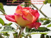 Love - Proverbs 12 v4 Rose by Dawn Hay
