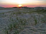 Cape Cod Prints - Provinceland Dunes Print by Juergen Roth