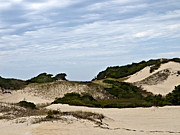 Hatches Harbor Prints - Provincetown Dunes Print by Daniela Kriva