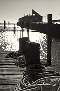 Photo Prints Prints - Provincetown Marina Print by Dapixara Art