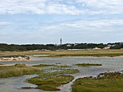 Hatches Harbor Prints - Provincetown Marshes Print by Daniela Kriva