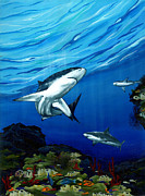 Scuba Paintings - Prowling by Sandra Camper