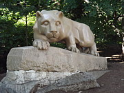 Pennsylvania State University Prints - Psu Nittany Lion Print by Chad Thompson