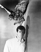 1960 Movies Prints - Psycho, Anthony Perkins, 1960 Print by Everett