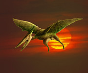 Pterosaur Framed Prints - Pterodactyl Framed Print by Spencer Sutton and Photo Researchers