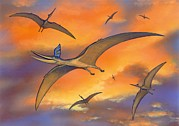 Pterosaur Framed Prints - Pterosaur Flying Reptiles, Artwork Framed Print by Richard Bizley