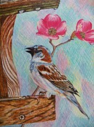 Judy Via-wolff Art - Ptg   Sparrow with Pink Dogwood in the Rain by Judy Via-Wolff