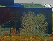 Feed Mill Photos - Pueblo Downtown-Sweeny Feed Mill 6 by Lenore Senior