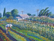 Cornfield Paintings - Puentes Farm by Vanessa Hadady BFA MA