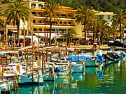 Johnny Trippick - Puerto de Soller Harbour
