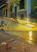 Tropical Sunset Metal Prints - Puerto Rico Collage 3 Metal Print by Stephen Anderson