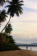 Puerto Rico Palms Print by Madeline Ellis