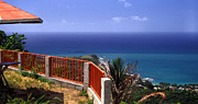 Caribbean Sea Framed Prints - Puerto Rico Panoramic Framed Print by Thomas R Fletcher