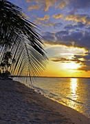 Puerto Rico Sunset 3 Print by Stephen Anderson
