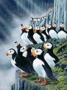 Puffin Paintings - Puffin College by Bob Patterson