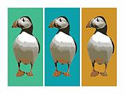 Bird Framed Prints - Puffin Trio Pop Art Framed Print by Michael Tompsett
