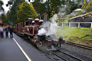 Yarra Valley Prints - Puffing Billy V2 Print by Douglas Barnard