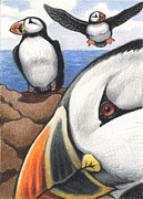 Puffin Drawings Posters - Puffins Poster by Amy S Turner