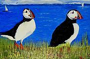 Puffin Paintings - Puffins in Newfoundland by Allison Prior