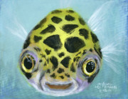 Tropical Fish Paintings - Puffy by Arleana Holtzmann