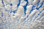 Daydream Framed Prints - Puffy Clouds and Blue Sky Framed Print by Bill Brennan - Printscapes