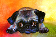 Colorful Drawings - Pug Dog portrait painting by Svetlana Novikova