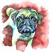 Fawn Pug Paintings - Pug in Red by Christy  Freeman