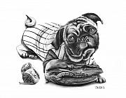 Glove Drawings Metal Prints - Pug Ruth  Metal Print by Peter Piatt
