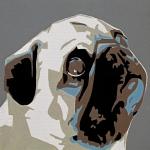 Pug Print by Slade Roberts