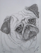 Cuddly Drawings Prints - Pug Print by Yvonne Johnstone