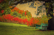 Autumn Scene Framed Prints - Pull Up A Chair Framed Print by Emily Stauring
