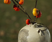 Hand Thrown Pottery Metal Prints - Pumpkin on a Stick in an Old Primitive Moonshine Jug Metal Print by Kathy Clark