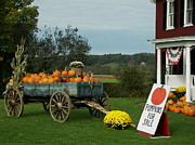Fall Prints - Pumpkin Wagon Print by Deniece Platt