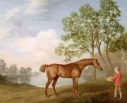 Chestnut Horse Paintings - Pumpkin with a Stable-Lad by George Stubbs