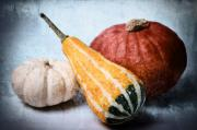 Round Mixed Media Posters - Pumpkins Poster by Angela Doelling AD DESIGN Photo and PhotoArt