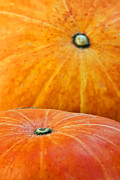 Food And Beverage Prints - Pumpkins background Print by Carlos Caetano