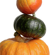 Orange Pumpkins Prints - Pumpkins Print by Bernard Jaubert