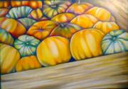 Farmers Market Drawings Prints - Pumpkins Print by Cami Rodriguez