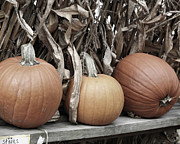 Farm Stand Art - Pumpkins For Sale by Smilin Eyes  Treasures