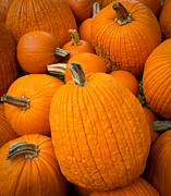Event Photo Prints - Pumpkins Print by Inge Johnsson