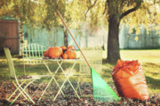 Autumn Leaf Photos - Pumpkins on the table by Sandra Cunningham