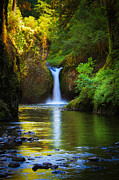 Columbia River Photos - Punchbowl Falls by Inge Johnsson
