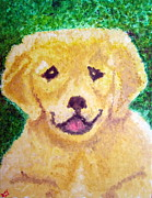 Contemplative Paintings - Pup - Golden Lab Puppy Dog by Donald William