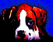 Boxer Puppy Digital Art Metal Prints - Pup1 Metal Print by Xn Tyler