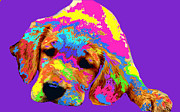 Puppy Digital Art Prints - Puppy  Print by Chandler  Douglas