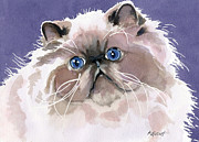 Persian Cat Paintings - Pure Sweetness by Marsha Elliott